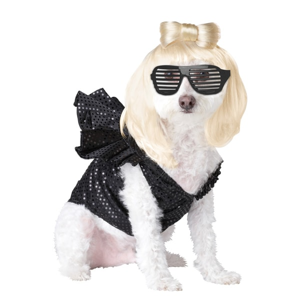 Pop Sensation Pup-A-Razzi Dog Halloween Costume