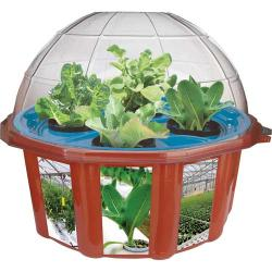 Hydro-Dome Plant Kit