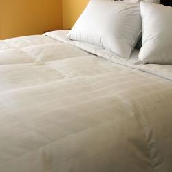 Eddie Bauer 550 Fill Power White Goose Down Comforter