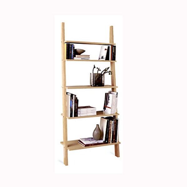 Pisa Style Leaning Ladder Shelves
