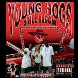 YOUNG HOGS - STILL HOGGIN