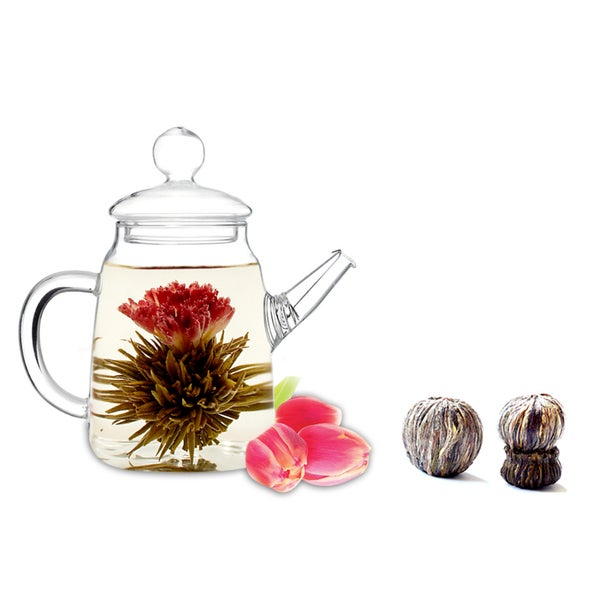 Tea Beyond Tea Pot Duo Blooming Tea Gift Set