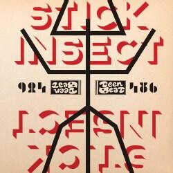 STICK INSECT - CIRCULAR SCRATCH