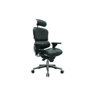 Eurotech Ergohuman Ergonomic Executive Leather Chair