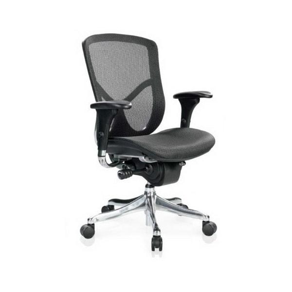 Eurotech Fuzion Mesh Ergonomic Chair with Aluminum Frame