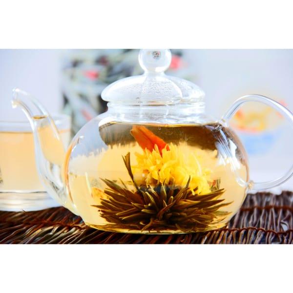 Tea Beyond Glass Teapot BON 28 oz