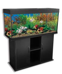 Delta Queen 66-gallon Rectangular Aquarium and Stand - Thumbnail 1