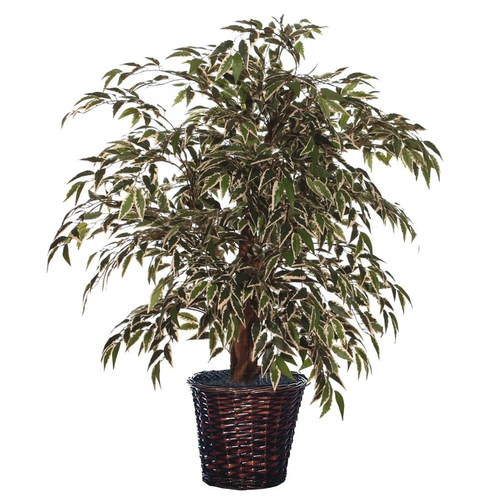 4-foot Variegated Smilax Extra Full Decorative Plant (4 Variegated Smilax Extra Full)