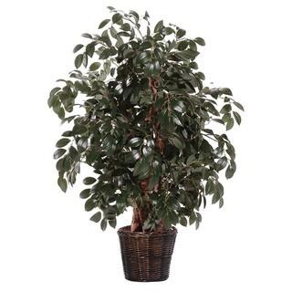Extra Full Silk / Polyester 4-foot Sakaki Ficus Decorative Plant