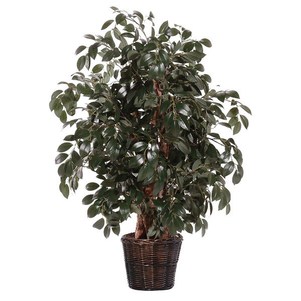 Extra Full Silk / Polyester 4-foot Sakaki Ficus Decorative Plant
