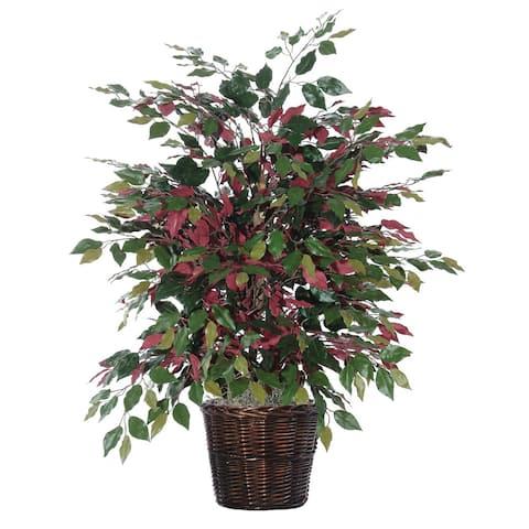 4-foot Capensia Extra Full Decorative Plant