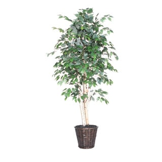 Paper Birch Executive 6-foot Silk/ Polyester Decorative Plant