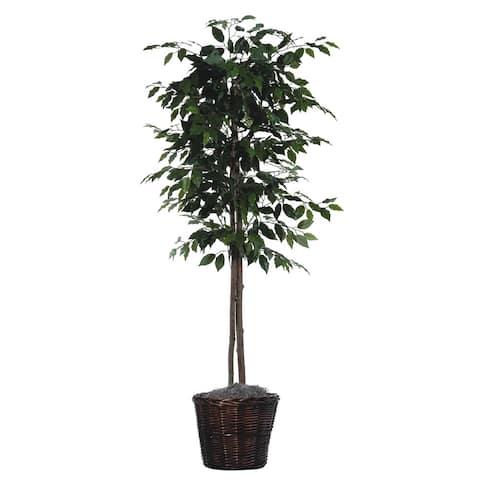 6 foot Ficus Tree Decorative Plant - 6 foot Ficus Tree Decorative Plant