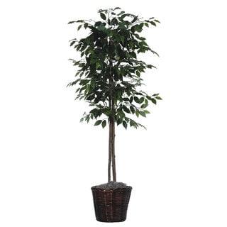6 foot Ficus Tree Decorative Plant