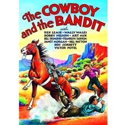 The Cowboy and the Bandit (DVD)