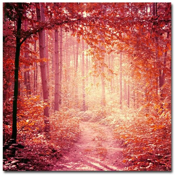 Beata Czyzowska Young 'Enchanted Forest' Canvas Art