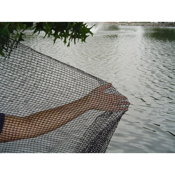 Dewitt pond netting 14x14 feet pn1414 free shipping on for Garden pool netting