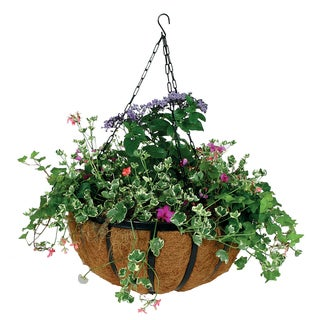 14-inch Forge Black Hanging Basket with Liner