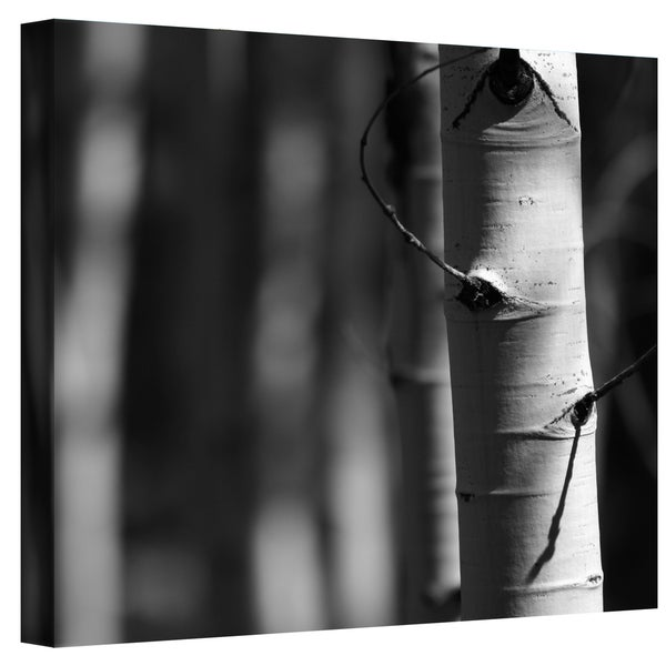 Mark Ross 'A Way Out' Wrapped Canvas Art