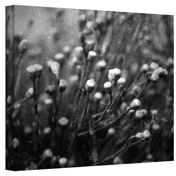 Mark Ross 'Anticipation' Wrapped Canvas Art