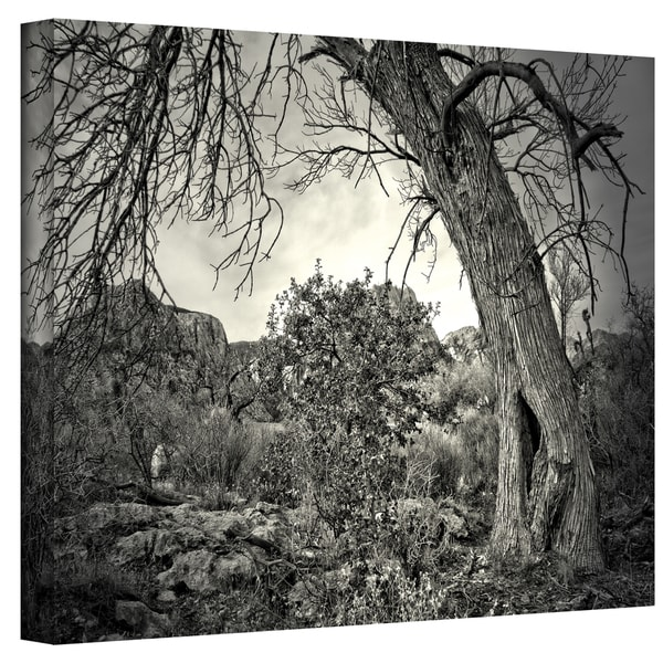Mark Ross 'Listen to Whispers' Wrapped Canvas Art