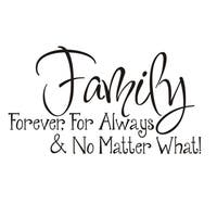 Vinyl Attraction 'Family; Forever, For Always & No Matter What' Vinyl Wall Art