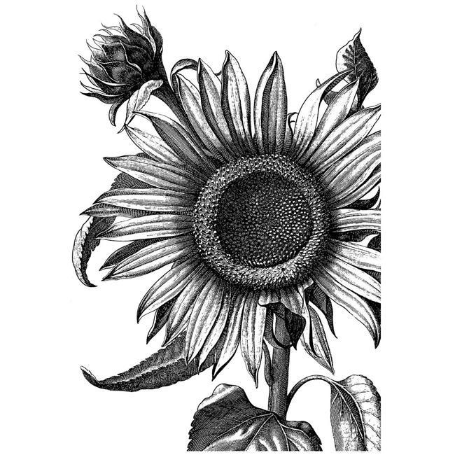 LaBlanche Sunflower Silicone Stamp