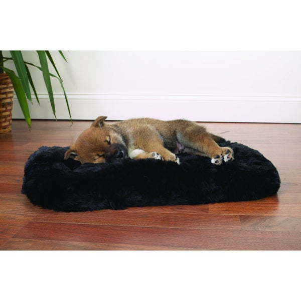 Slumber Pet Cloud Black Cushion