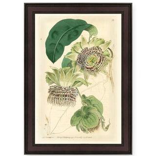 S. Watt 'Wild Flower II' American Giclee Print Framed Art