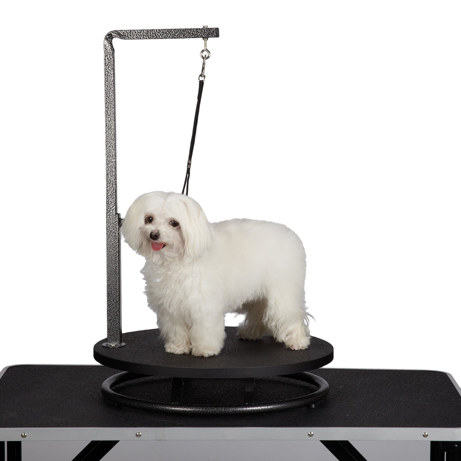 master equipment Small Pet Grooming Black Table (Master E...