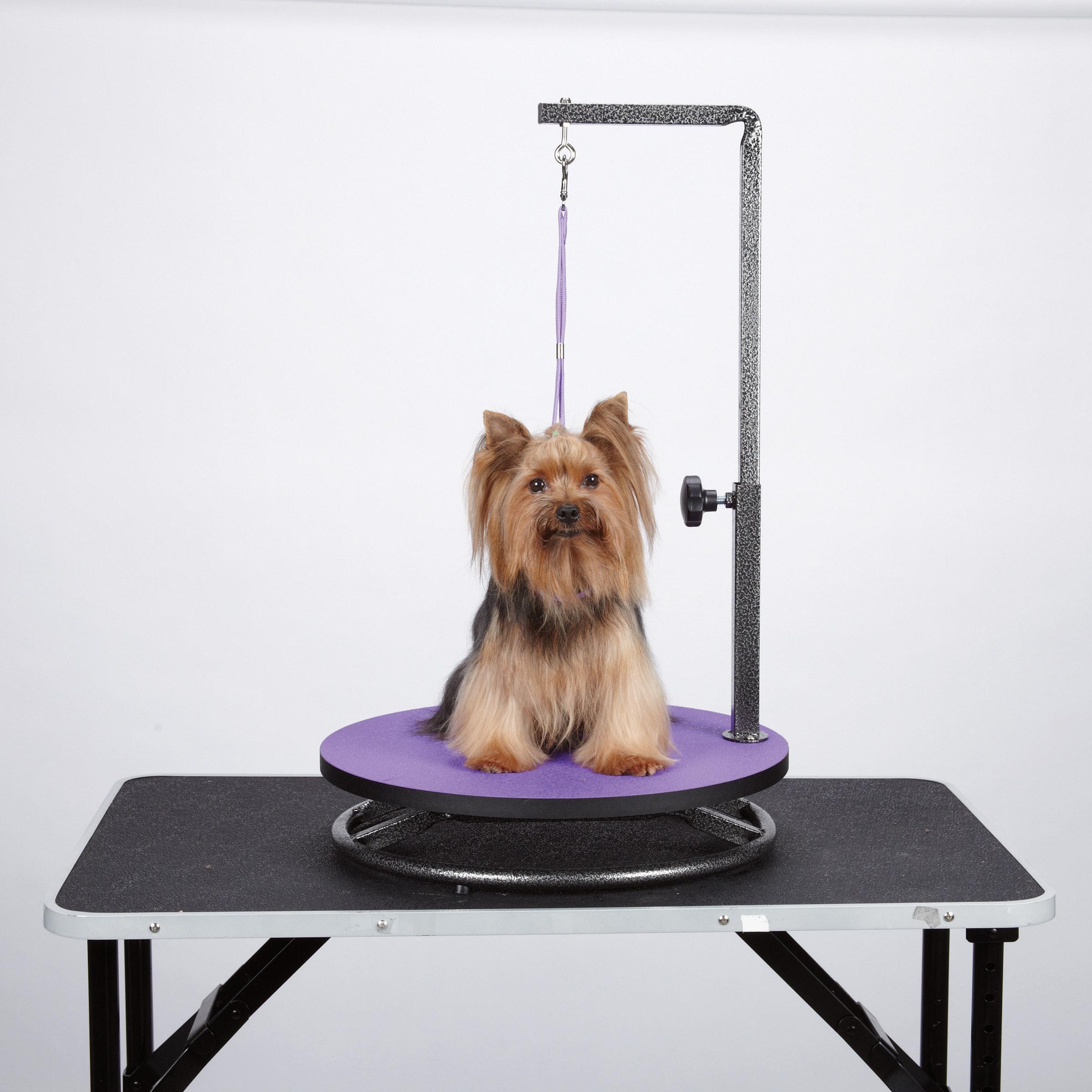 master equipment Small Pet Grooming Purple Table (Purple)