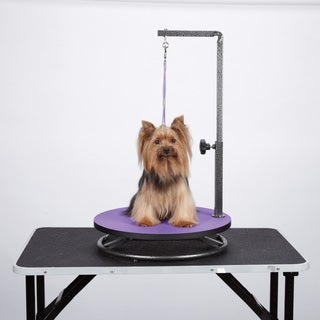 Master Equipment Small Pet Grooming Purple Table