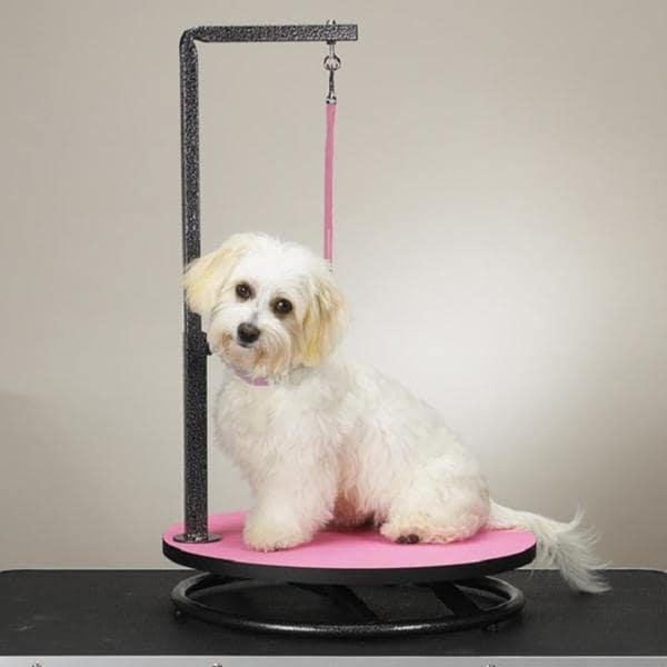 Master Equipment Small Pet Grooming Table (Pink)