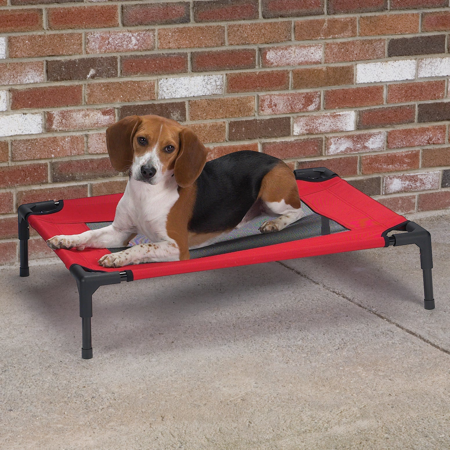 Guardian Gear Crimson (Red) Pet Cot with Mesh Panel (As I...