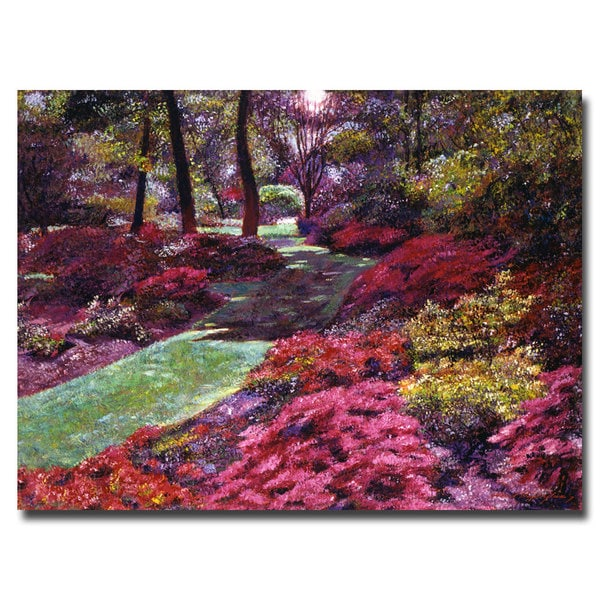 David Lloyd Glover 'Azalea Park' Canvas Art