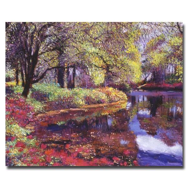 David Lloyd Glover 'Refrelctions of Azalea Blooms' Canvas
