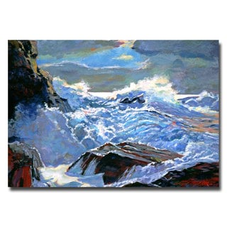 David Lloyd Glover 'Foaming Sea' Canvas Art