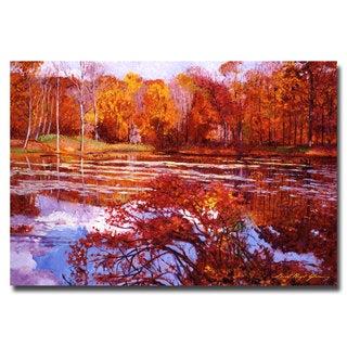 David Lloyd Glover 'Scarlet Maples' Canvas Art