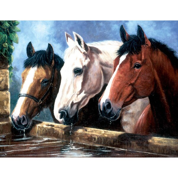"""Junior Large Paint By Number Kit 15-1/4""""X11-1/4""""-Three Of A Kind"""
