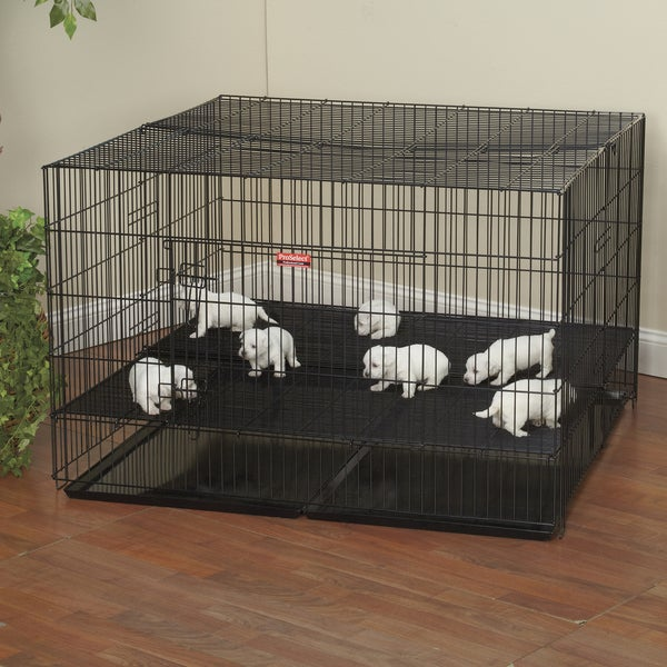 ProSelect Large Puppy Playpen + Bonus 7-pack of Puppy Pads