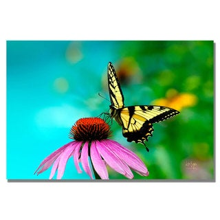 Lois Bryan 'Butterfly on the Edge' Canvas Art