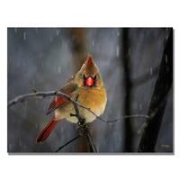 Lois Bryan 'Snowy Cardinal' Canvas Art