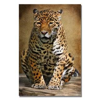 Lois Bryan 'Cheetah' Canvas Art
