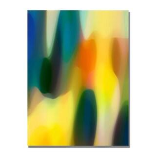 Amy Vangsgard 'Color Fury V' Canvas Art