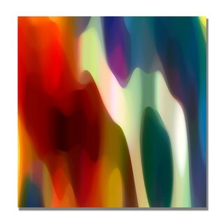 Amy Vangsgard 'Color Fury II' Canvas Art