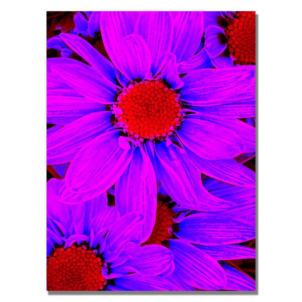 Amy Vangsgard 'Pop Daisies IX' Canvas Art
