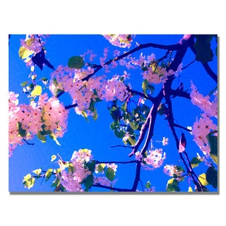 Amy Vangsgard ' Pink Flowering' Canvas Art