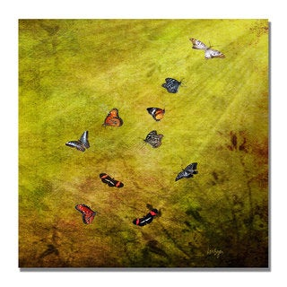 Lois Bryan 'Butterfly in the Sky' Canvas Art