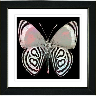 Studio Works Modern 'White Zebra Butterfly' Framed Print