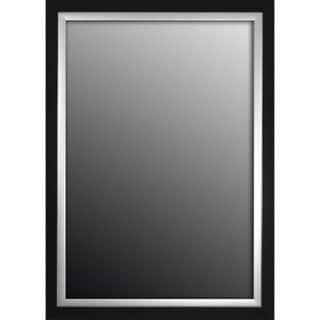 Natural Ebony Black With Silver Trim 17x35-inch Mirror